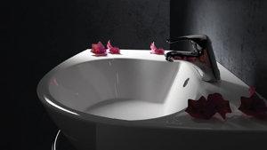 baignoire douche et lavabo gain de place. Black Bedroom Furniture Sets. Home Design Ideas